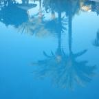 Blaue Sehnsucht
