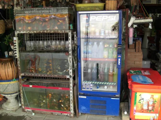 Bangkok2007_3 084
